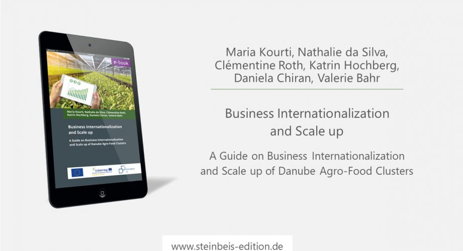 Business Internationalization and Scale up